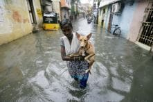 Rains Lash Chennai Again, People Told to Stay at Home