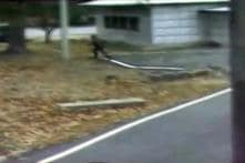Video Shows North Korea Defector Running Towards South Korea, Being Chased and Shot by Guards