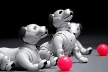 AIBO Intelligent: Sony to Release AI-infused Robotic Pups in the US
