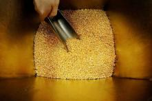 Gold Hits Eight-Month High Amid US-China Trade Concerns