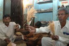 Dadaji Ramaji Khobragade: Rural Inventor Who Revolutionalised Rice Farming Breathes His Last