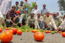 Farmers' Stir Remains Peaceful But Vegetable Prices Continue to Soar on 3rd Day of Strike