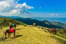 5 Picturesque Hill Stations near Chennai You Can't Miss