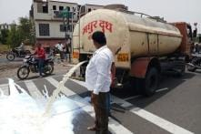 On World Milk Day, Protesters Empty Tanker After Tanker on India's Roads