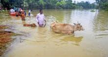 Tripura Flood Situation Remains Critical; Biplab Deb Says Focus on Saving Lives
