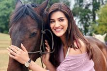 Kriti Sanon Displaying Equine Love is the Best Thing On the Internet Today