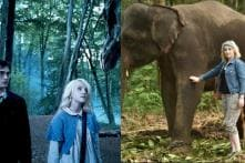 Harry Potter's Luna LoveGood is On a Mission-- To Save Indian Elephants