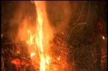 Farmers In Punjab, Haryana Continue To Defy Ban On Stubble Burning