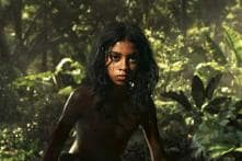 'Mowgli: Legend of the Jungle' is an Ode to India, Says Freida Pinto