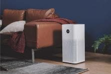 Beat The Pollution: Best Affordable Air Purifiers to Buy For Your Home