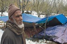 November Snow in Kashmir, a First in Nine Years, Rains Misery on Apple Growers