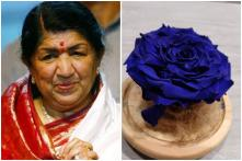 From Learning Hindi to Naming a Rose After Her, a Spanish Florist Is Proving He's Lata Mangeshkar's Biggest Fan