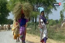 Reporters Project: Chhattisgarh Adivasis — Their Concerns, Their Voices