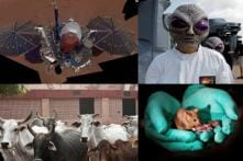 'Can Cow Urine Cure Cancer?' to 'Did Aliens Already Visit Us?' The Bizarre Science Stories Of 2018