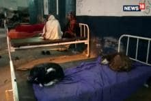 Found In Bihar: Dogs Replace Patients on Hospital beds