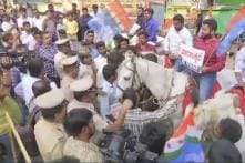 Riding Horses, Karnataka Youth Congress Workers Protest Outside BJP Headquarters Over Alleged Horse Trading