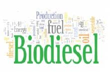 Biodiesel: The Future Fuel of Automobiles in India - Analysis