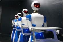 Chennai's Porur Gets Restaurant With Robot Waiters Who Speak in English and Tamil