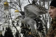 Hawkeye: Vladimir Putin's Seat of Power in Moscow is Protected by These Birds of Prey