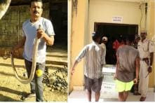 Dodging Snakes, Crocodiles Part of Everyday Tussle for Poll Staff in Andaman & Nicobar's Single LS Seat