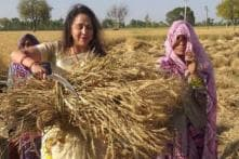 With Hay, Bale and Sickle, Hema Malini Kickstarts Her Campaign from Mathura's Farmlands