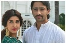 Sonarika Bhadoria Shares Poetic Instagram Post for Co-star Shaheer Sheikh