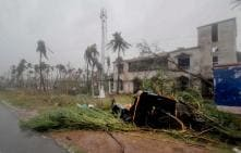 Bhubaneswar Loses Over One Million Trees in Cyclone Fani