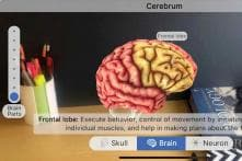 From Dissecting Frogs to Understanding The Human Brain, AR is The Tool of Choice For Designmate
