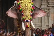 Owners Threaten to Boycott Festivals After Govt Bans Kerala's Most-loved Elephant from Thrissur Pooram