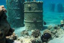 In Deepest Dive Ever Performed, Explorer Finds Trash at Bottom of Ocean Floor
