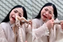 Blogger Tries to Eat Live Octopus on Camera, It Latches Onto Her Face Instead
