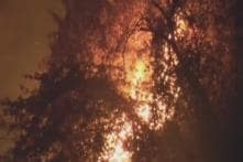 Forest Fires Continue Across Uttarakhand, Nearly 2,000 Hectares of Green Cover Destroyed So Far