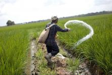 27 Farmers from Andhra Pradesh, Telangana File Nominations Against PM Modi in Varanasi