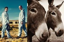 Breaking Bad Film on the Cards? Twitter Thinks So After Bryan Cranston and Aaron Paul Share Same Pic