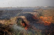 Iraq Harvests Go Up in Smoke, But Who Lit the Fires?