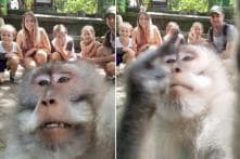 Most Epic Selfie Ever? This Monkey Just Photobombed a Family's Vacation Photo and It's Hilarious
