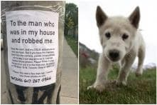 Heartbroken Note to Camera Thief to Return Photos of Deceased Pet Dog Goes Viral