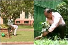 Modi 2.0 Ministers S Jaishankar and Harsh Vardhan Plant Saplings on World Environment Day