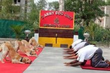 International Yoga Day 2019 Celebrations - In Pictures