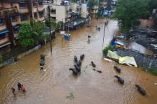After Heavy Rains, Godavari Starts Flowing above Danger Mark, Leads to Flood-like Situation in Nashik