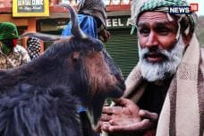 Walking With The Bakarwals: A 160 km Journey Through The Mountains Of Himalaya
