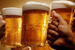 Recreating Fossilised Past: Will You Drink Your Beer if Somebody Spit in the Brew?