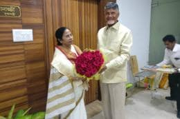 Everyone Will Be the Face of Opposition, Says Mamata Banerjee After Meeting Chandrababu Naidu