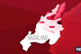 Nagaland Election Results: Full List of All Winning Candidates (MLAs)