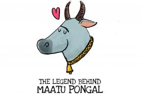 Pongal 2019: Why Maattu Pongal is Celebrated; Story, History & its Significance