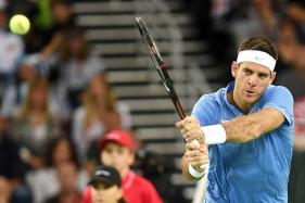 Auckland Classic: Del Potro Defeats Ferrer in Straight Sets to Seal a Spot in the Final