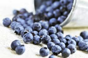 Eating Berries May Prevent Cancer: Study