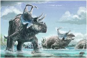 Scientists Unearth Remains of 76 Million-Years-Old Spiky Tank-Like Dinosaur In US