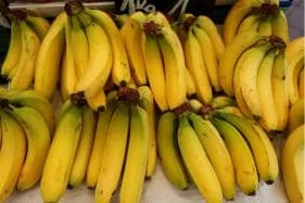 In Caribbean Islands of Guadeloupe, Going Green Means Going Bananas