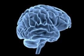 Human Brains are Naturally Attracted to Laziness: Study
